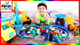 Учим Морских Животных на Пляже: Акулы. Грузовые Машинки на Песке. Развивающие Видео для Детей!
