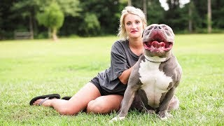 Mississippi Mom Is The $15,000 Pit Bull Queen MP3