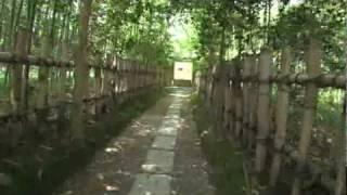 A084【京都】嵯峨野・愛宕街道-5<清凉寺~厭離庵(えんりあん)>