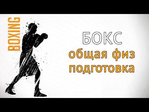 Программа тренировки по боксу на скорость