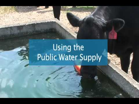 Water Sources for Livestock Watering Facilities