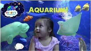 SEA LIFE SYDNEY AQUARIUM Family Fun Activities for Kids Evren Adventures ToysReview