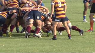 2016 Round 1 Tries vs Wests Scarborough