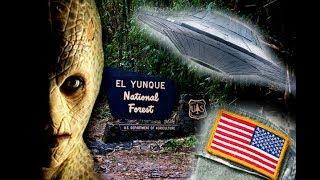 Estados Unidos se Apodera del Yunque en Puerto Rico