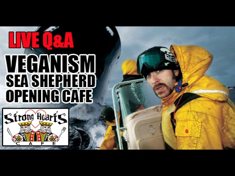 Guest Joel Capolongo Talks Sea Shepherd & Opening Vegan Cafe Q&ALIVE 2/16/17