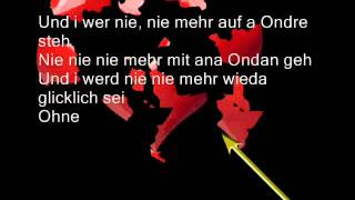 Wolfgang Ambros • Warum host des gmocht