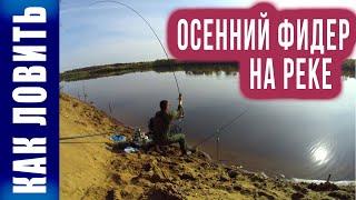 Рыбалка на Вятке Осенний фидер Как ловить