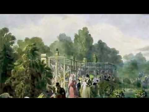 Saint Saens: Carnival of the Animals~Volieres (Aviary)