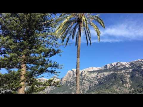 Palma Majorca Properties - beautiful Majorca