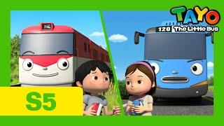 Tayo Bus Deutsch S5 l Das Rennen zwischen Tayo und Titipo l Tayo neue Folge l Tayo Der Kleine Bus