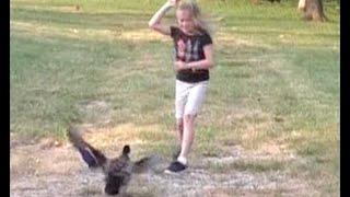 Vicious Farm Duck Attacks Daughter