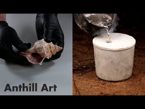 Casting the Inside of a Seashell with Molten Aluminum