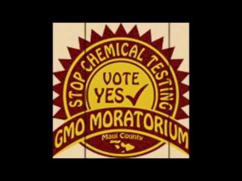 Vote YES! Vote YES! (On The Maui GMO Moratorium)