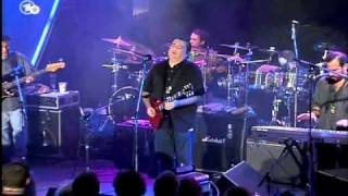Watch Los Lobos That Train Dont Stop Here video