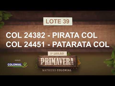 LOTE 39   COL 24382,24451