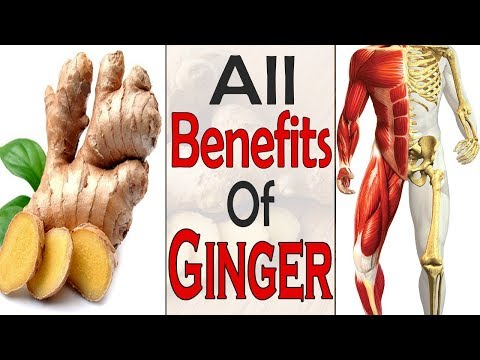 What Happens To Your Body If You Eat Ginger Every Day - Health and Fitness || Life Care