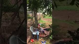 Nguyễn.t.kim.Thanh B.Chánh tàn nhẫn đọc ác mua chuộc đia phương chiếm đất đuổi bà già ra sân