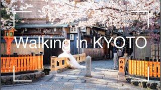 KYOTO Gion Tatsumi bridge【桜の祗園巽橋】フォトスポットを歩いてみた。