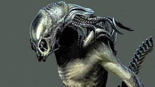 Gambar cover 10 CRAZY XENOMORPHS We Will Never See...