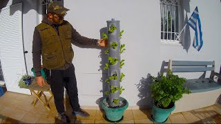 Grow Lettuce Vertically in pvc Tower!