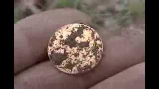 Detectoare de metale (detectoare de aur) Annita Hightech