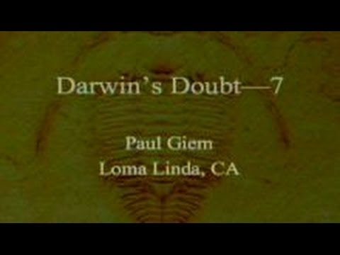 Darwin's Doubt (Part 7) 11-9-2013 by Paul Giem