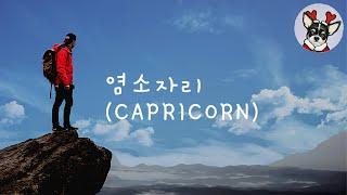 ★봉자네 점성학★ 황도 별자리 ⑩ 염소자리 Capricorn