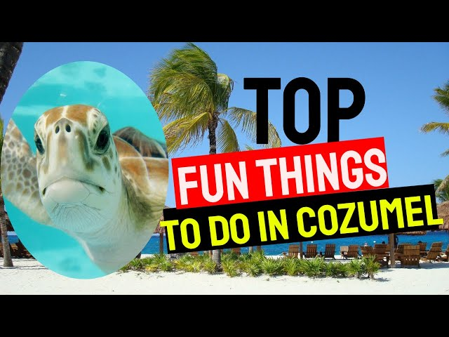 Fun Things To Do In Cozumel Mexico - Exploring Cozumel Mexico! 7 Top Things To Do In Cozumel