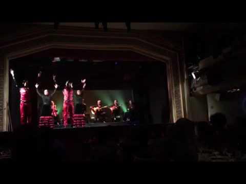 La casa del flamenco 2
