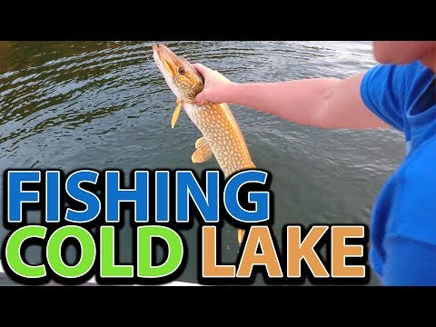Fishing On Cold Lake, Alberta | Catching Northern Pike / Jackfish | Dolynny TV Fishing Vlog