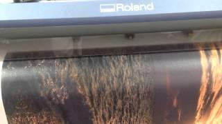 pechat na holste krasnodar sochi maykop(Процесс фото печати на художественном натуральном холсте в компании МЕГА ПРИНТ Краснодар. Заказ на www.mega-print..., 2014-07-10T14:10:37.000Z)