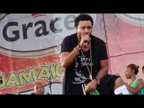 JAMAICA JERK FESTIVAL shaggy rayvon jerk festival 2013 nyc queens ROY WILKINS PARK