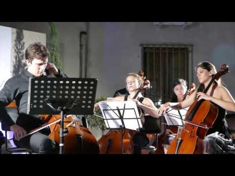 8 July 2016-21.15- V.Herbert: Concerto-Maximilian Hornung,  Casalmaggiore Strings.