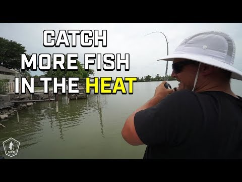 Post Spawn Bass Fishing Tips For The Summer Heat