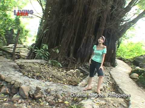 NEGROS ORIENTAL: THIS ROUGH MAGIC | Living Asia Channel (HD)