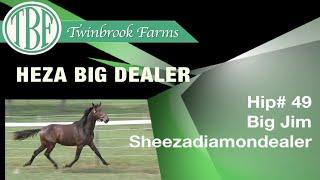H49 Heza Big Dealer CYS
