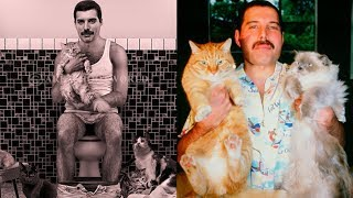 Gambar cover Freddie Mercury and His Cats