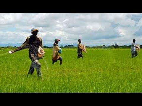 Special Agricultural Policies For Farmers