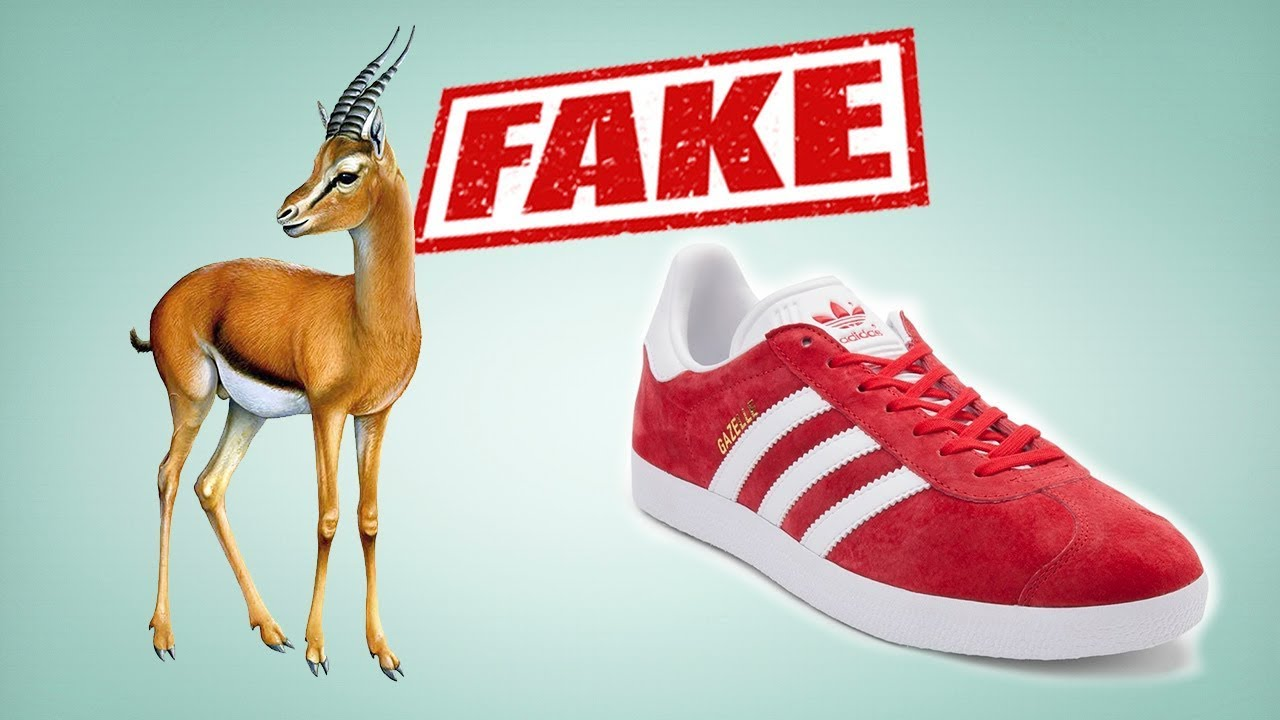 Shoe Shed - YouTube