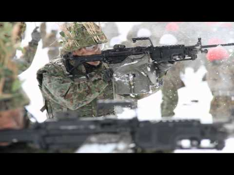 Japan Self Defense Forces 2014 (日本国自衛隊 2014)