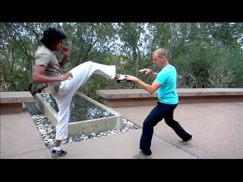 Real Tai Chi Fighting - Ride the Tiger