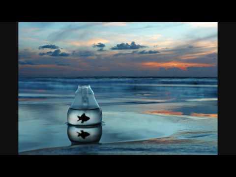 Chew Lips - Salt Air (Plastician Remix) HD 320kbps