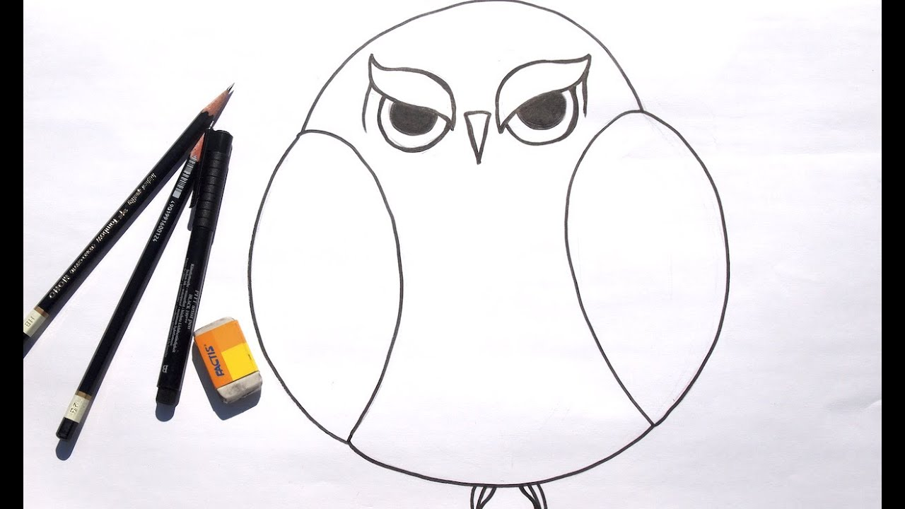 Beginner learn to draw grumpy owl for acrylic painting for Basic sketches for beginners