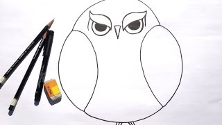 Beginner Learn to Draw Grumpy Owl for Acrylic Painting