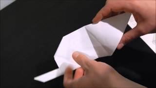 MIT Origami Beaver Tutorial #MIT2019