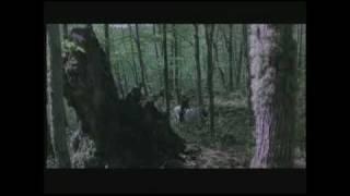 El Nido (1980) / Haydn's The Creation