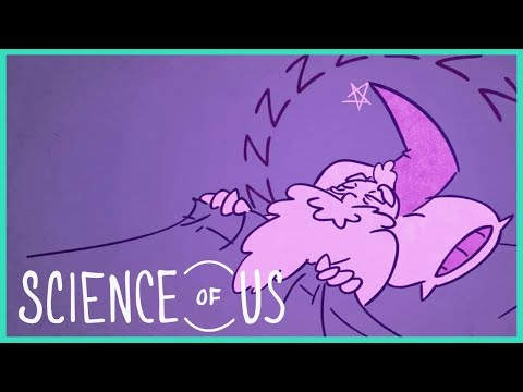 "The Good Side of Bad Dreams: ""The Science of Us"" Episode 2"