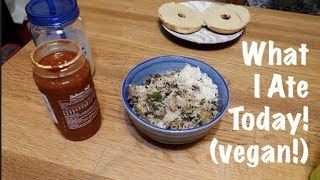 What I Ate Today - Vegan!