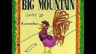 big mountain peaceful revolution