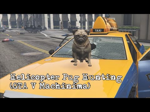Helicopter Pug Hunting